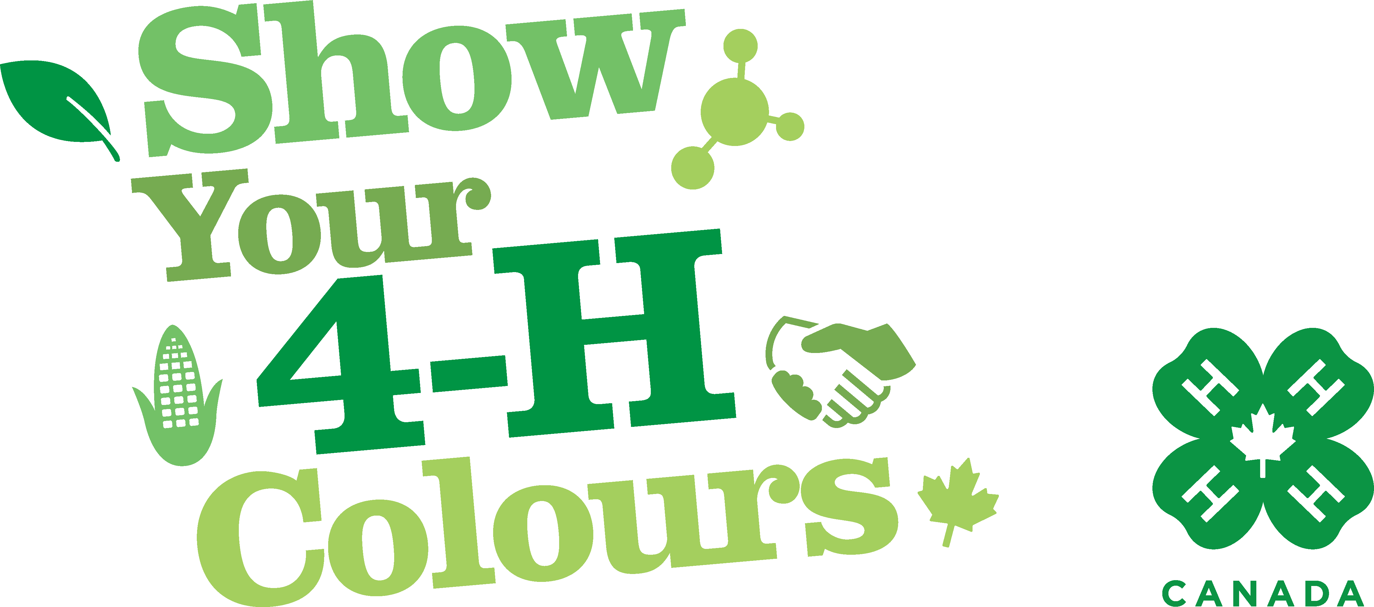Show Your 4-H Colous